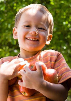 Boy holding apples
